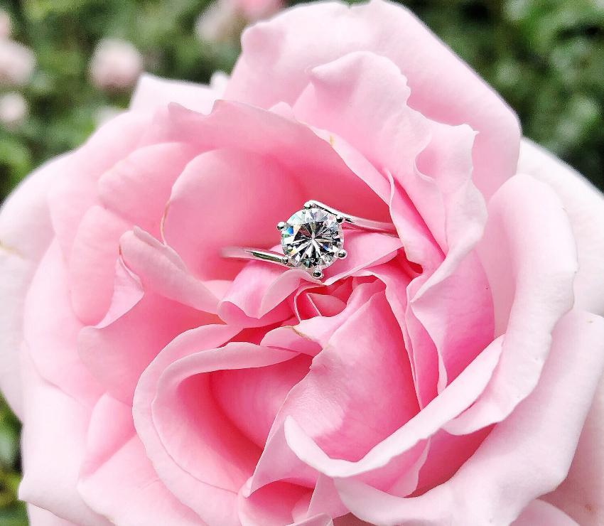 Verlobungsring auf einer Rose