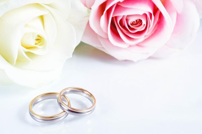 Bicolor-Ringe mit Rosen drapiert