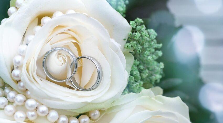 Silberringe in einer Rose