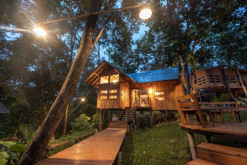 Waldhütte bei Nacht