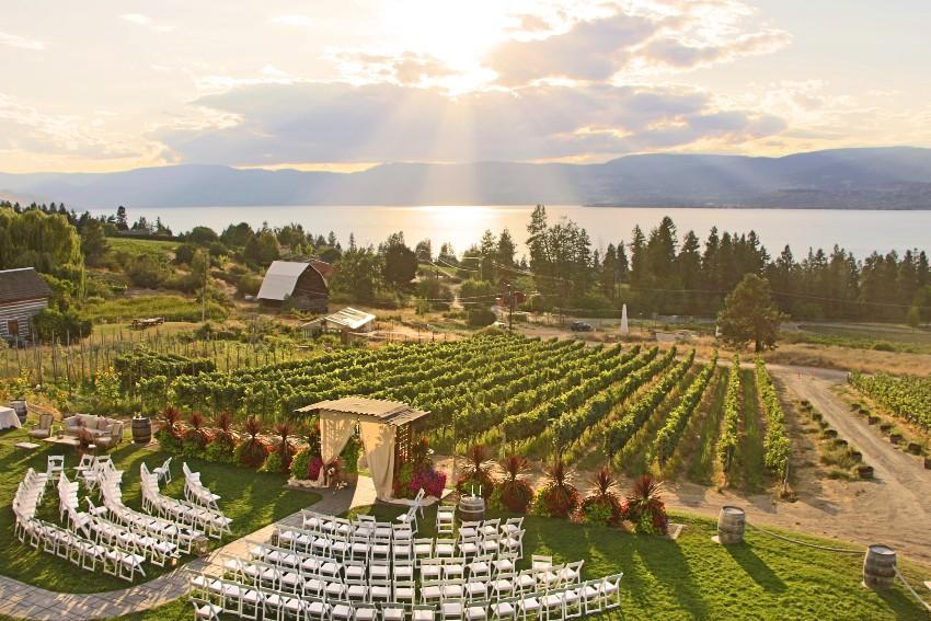 Hochzeit auf dem Weingut - Hochzeitsdeko