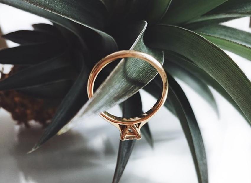 Roségoldring als Verlobungsring an einer Pflanze