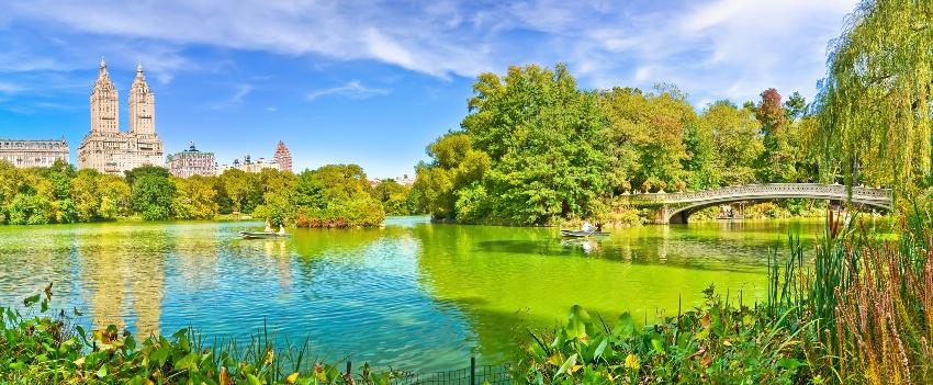 Heiratsantrag in New York - Bow Bridge und Central Park
