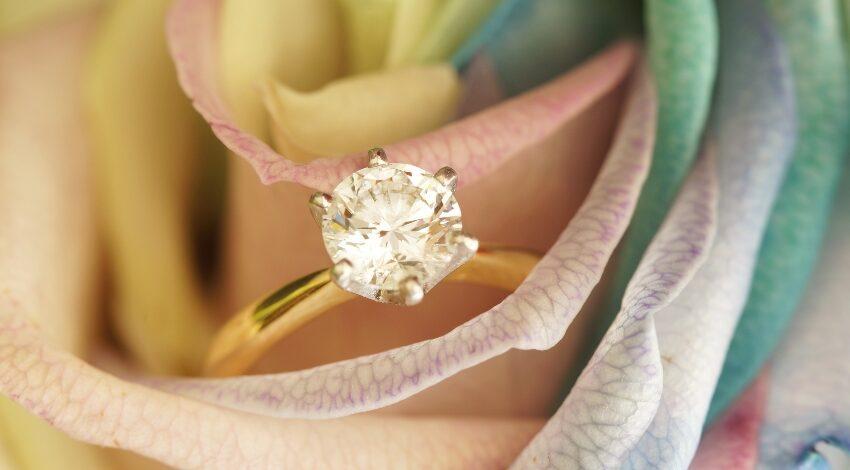 Antragsringe 2021 - Ring in einer Rose