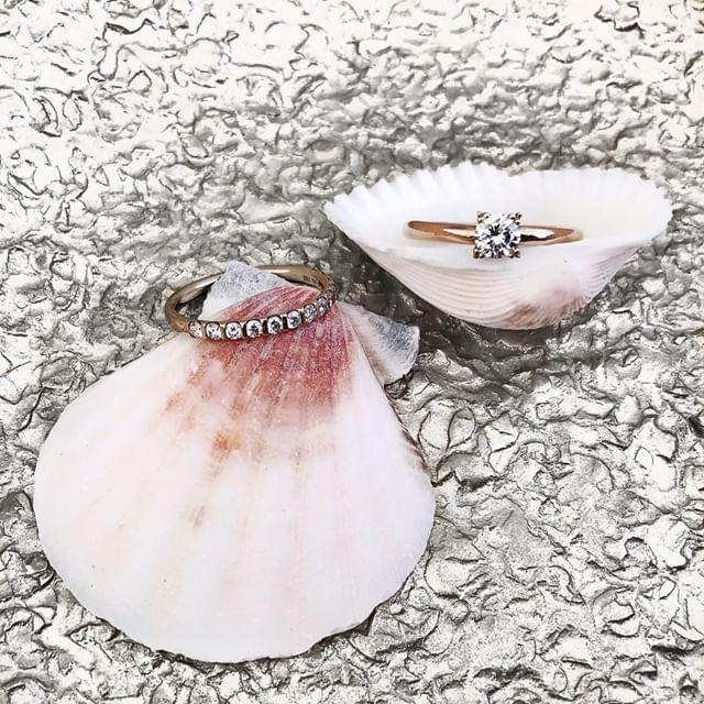 Diverse Ringe auf Muscheln drapiert