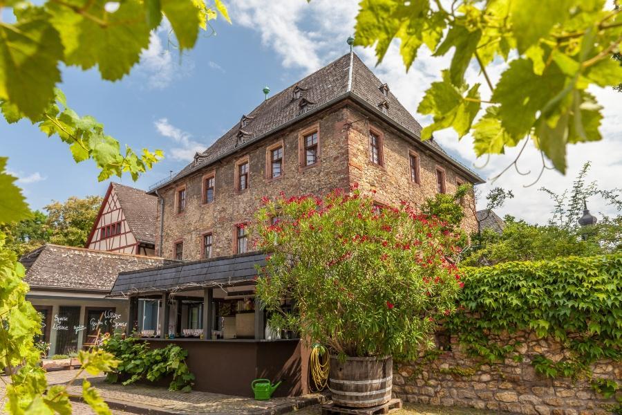 Weingut im Rheingau - Mediterrane Hochzeit