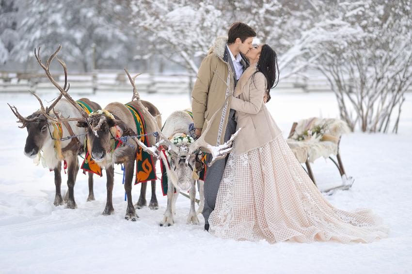 Brautpaar im Schnee mit Rentieren und Schlitten
